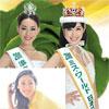 2011年ミスワールド日本代表